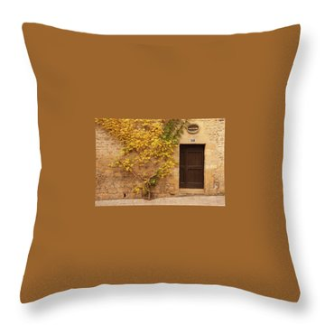 Throw Pillow featuring the photograph Doorway, Sarlat, France by Mark Shoolery