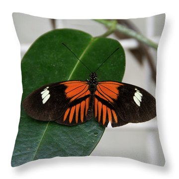 Doris Longwing On Leaf Throw Pillow