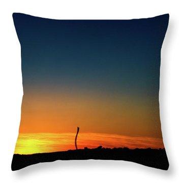 Dorney Park Sunset Throw Pillow