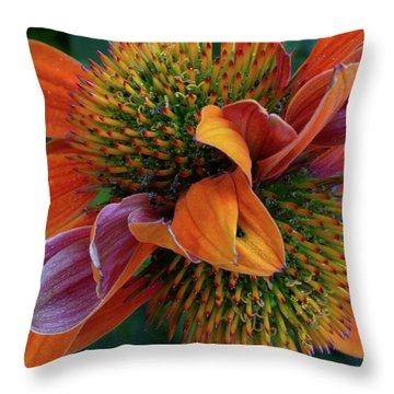 Throw Pillow featuring the photograph Double Coneflower by Dale Kincaid