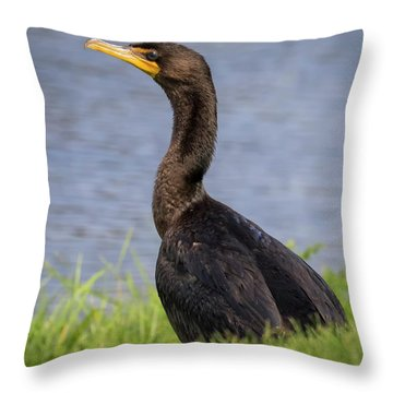 Throw Pillow featuring the photograph Double-crested Cormorant by Ricky L Jones