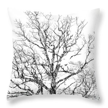 Double Exposure 1 Throw Pillow