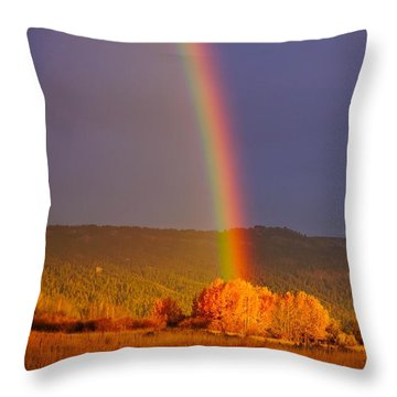 Double Gold Throw Pillow
