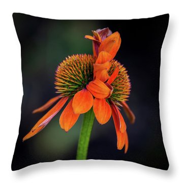 Throw Pillow featuring the photograph Double Your Pleasure by Dale Kincaid
