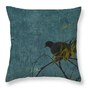 Throw Pillow featuring the photograph Dove In Blue by Attila Meszlenyi