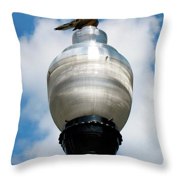 Throw Pillow featuring the photograph Dove On A Light Post by Lora J Wilson
