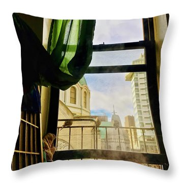 Throw Pillow featuring the photograph Doves In My Window by Joan Reese