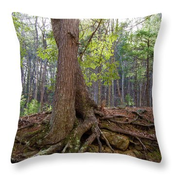 Down In Her Roots Throw Pillow