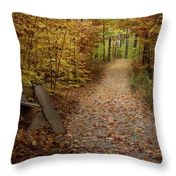 Down The Trail Throw Pillow
