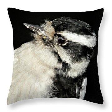 Downy Woodpecker Female Throw Pillow