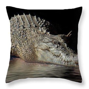 Throw Pillow featuring the photograph Dozy Crocodile by Elaine Teague