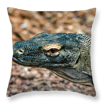 Throw Pillow featuring the photograph Dragon With No Fire by Dheeraj Mutha