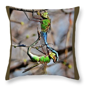 Dragonfly Love Throw Pillow