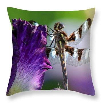 Dragonfly On Iris Throw Pillow