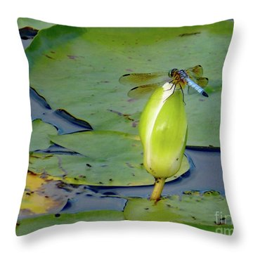 Dragonfly On Liliy Bud Throw Pillow