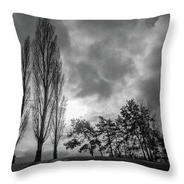 Dramatic Fall Trees Throw Pillow