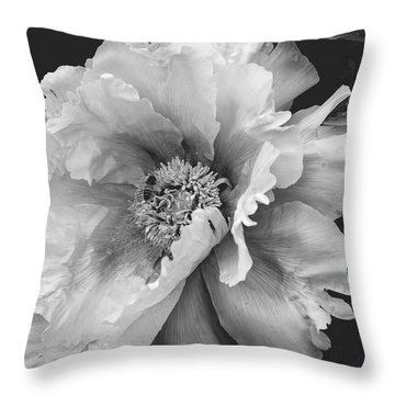 Drawn In Throw Pillow