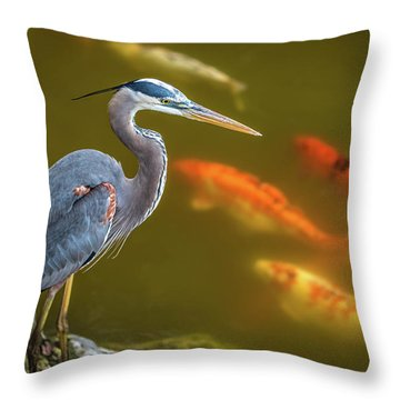 Throw Pillow featuring the photograph Dreaming Tricolor Heron by Francisco Gomez