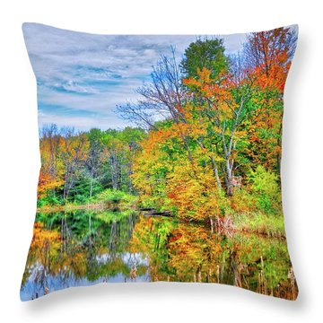 Throw Pillow featuring the photograph Dreams Of Fall In The Finger Lakes by Lynn Bauer