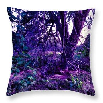 Dreamy Desert Wash  Throw Pillow