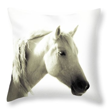 Dreamy Mare Throw Pillow