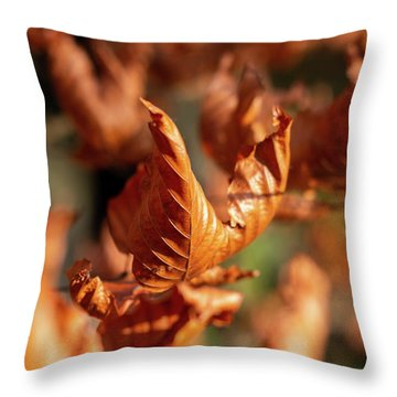 Throw Pillow featuring the photograph Dried Autumn Leaves by Scott Lyons