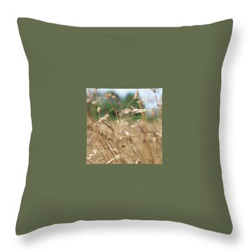 Throw Pillow featuring the photograph Dried Grass Out Of Focus by Scott Lyons