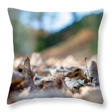 Throw Pillow featuring the photograph Dried Leaves On The Ground by Scott Lyons