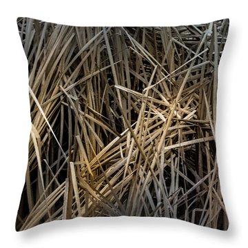 Dried Wild Grass IIi Throw Pillow