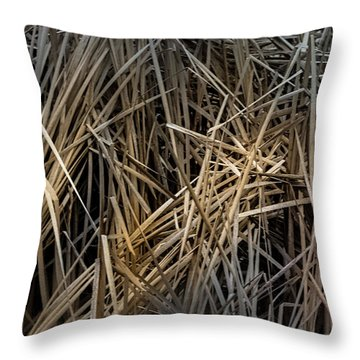 Dried Wild Grass IIi Throw Pillow