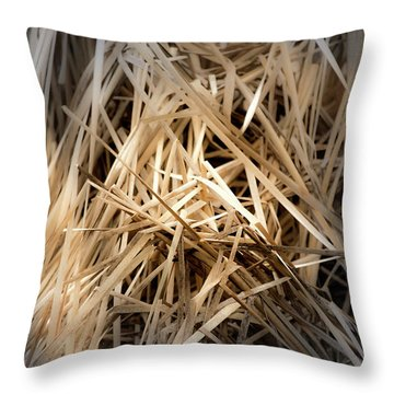 Dried Wild Grass I Throw Pillow