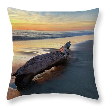 Drift Wood At Sunset II Throw Pillow
