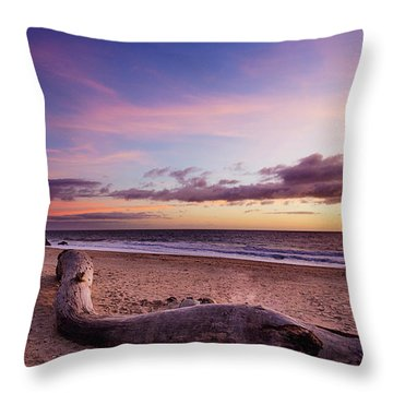 Driftwood At Sunset Throw Pillow