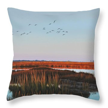 Dropping In - Teal Throw Pillow