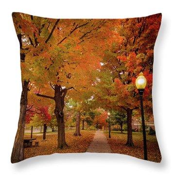 Drury Autumn Throw Pillow