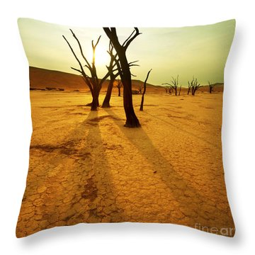 Arid Climate Throw Pillows