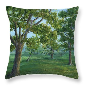 Dueling Grounds New Orleans Louisiana Throw Pillow