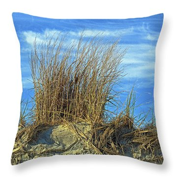 Throw Pillow featuring the photograph Dune Grass In The Sky by Bill Swartwout Fine Art Photography