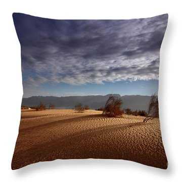 Dune In Motion Throw Pillow