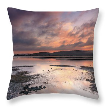 Dusky Pink Sunrise Bay Waterscape Throw Pillow