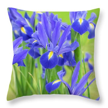 Throw Pillow featuring the photograph Dutch Iris 'professor Blaauw' Flowers by Tim Gainey