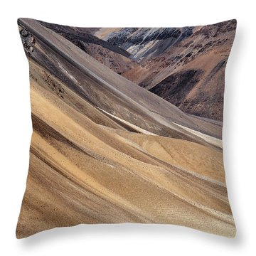 Throw Pillow featuring the photograph Dwarfed by Whitney Goodey