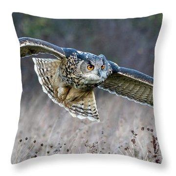 Eagle Owl Gliding Throw Pillow