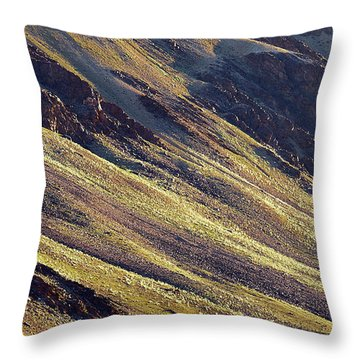 Throw Pillow featuring the photograph Early Morning Light On The Hillside In Sarchu by Whitney Goodey