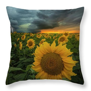 Throw Pillow featuring the photograph Eccentric  by Aaron J Groen
