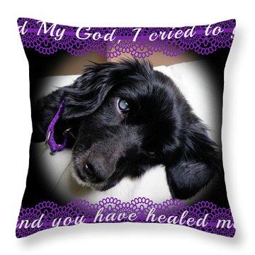Edie Framed Throw Pillow