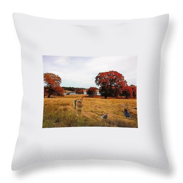 Edit This- A Year In Review Throw Pillow