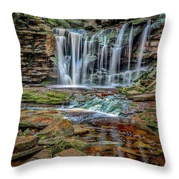 Elakala Falls 1020 Throw Pillow