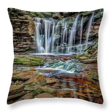 Elakala Falls 1020 Throw Pillow