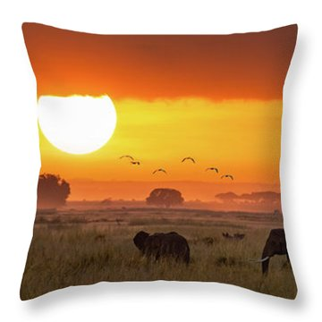 Elephants At Sunrise In Amboseli, Horizonal Banner Throw Pillow